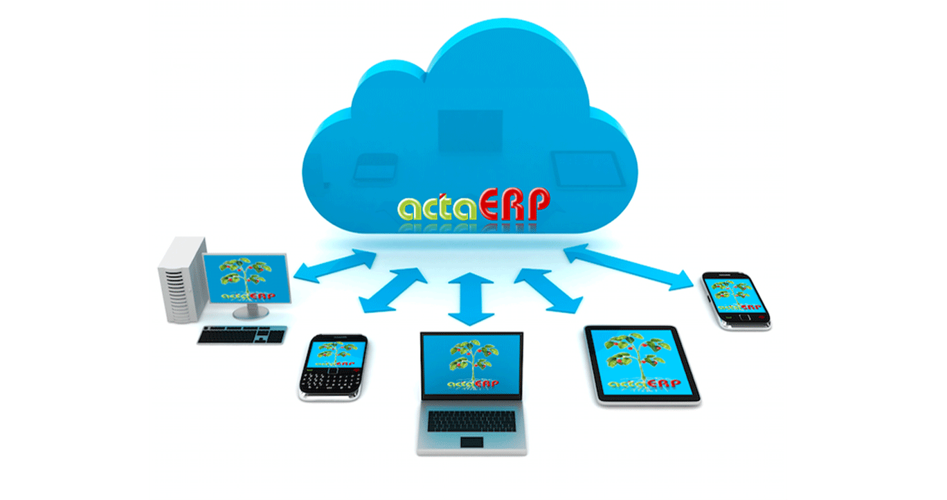 actaERP Cloud
